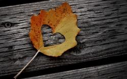 hd-herfst-achtergrond-met-een-herfstblad-met-hartje-er-in-op-een-stuk-hout-herfst-wallpaper.jpg