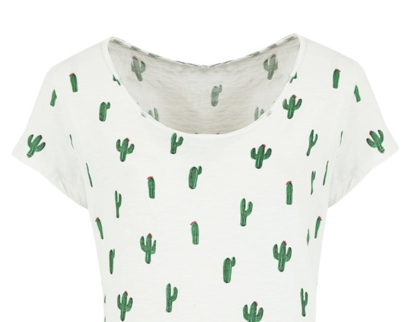 musthave-cactus-top